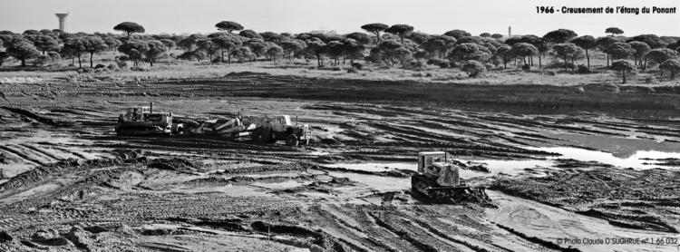 Histoire de La Grande Motte